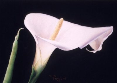 Roy Moffatt | Watercolor Artist